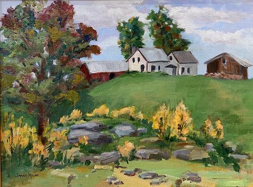 Vermont Farm in Northeast Kingdom by Janet Kolar