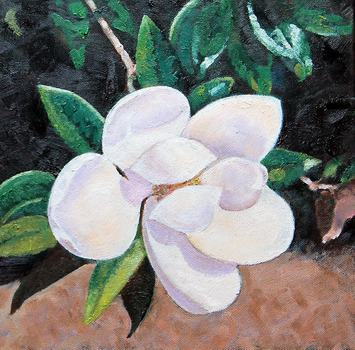JJ's Magnolia by Susan Hitchcock