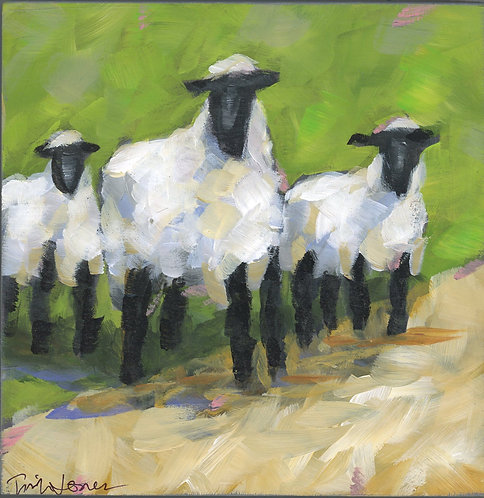 Sweet Sheep by Trish Jones