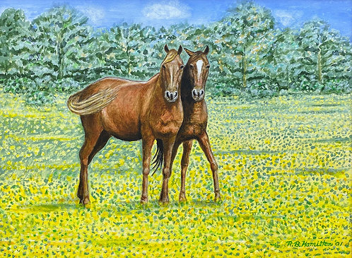 Two Horses by Dick Hamilton