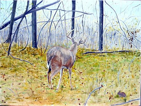 9 Point Buck by Gary Rubin