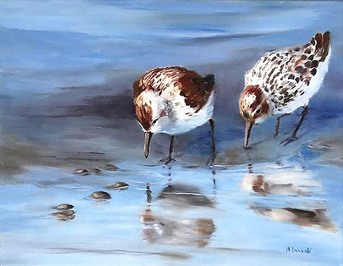 Feeding at Low Tide by Rebecca McDannold