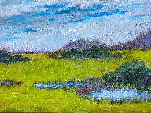 Spring Rain by Lois Grunder