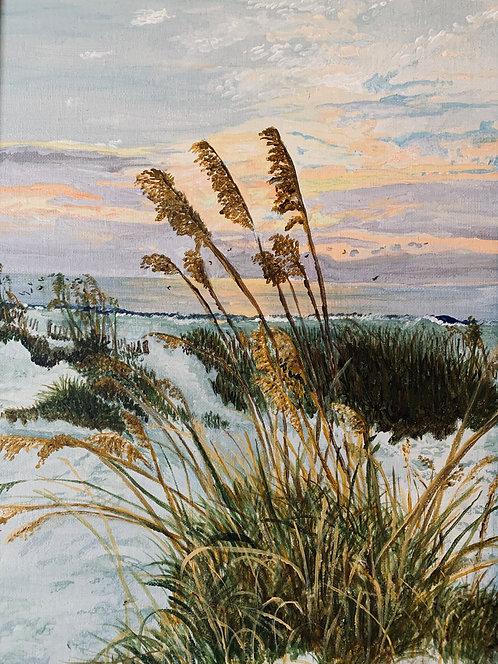Sunrise Through Sawgrass by Jeanne Tennyson