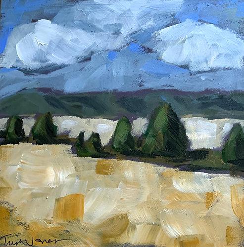 Montana in Fall by Trish Jones