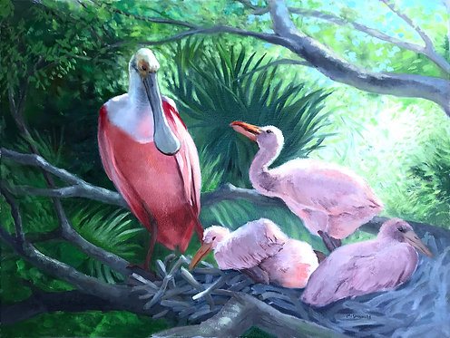 Roseated Spoonbill by Rebecca McDannold