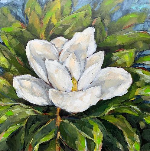 Magnolia Blossom by Trish Jones