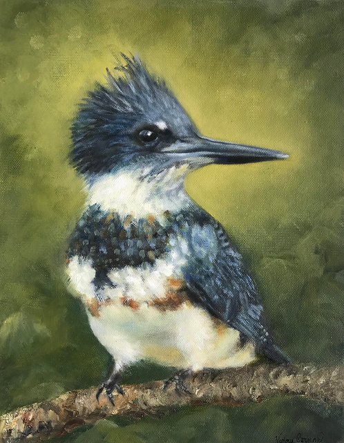 Kingfisher by Victoria Germond