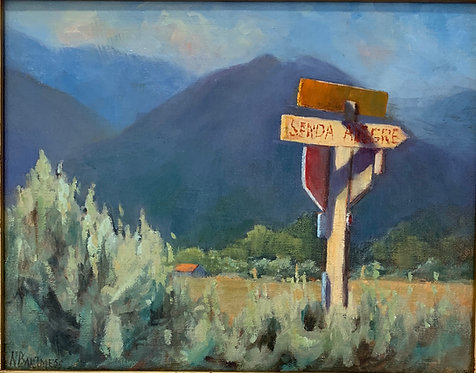 Sende Alegre by Nancy Bartmess