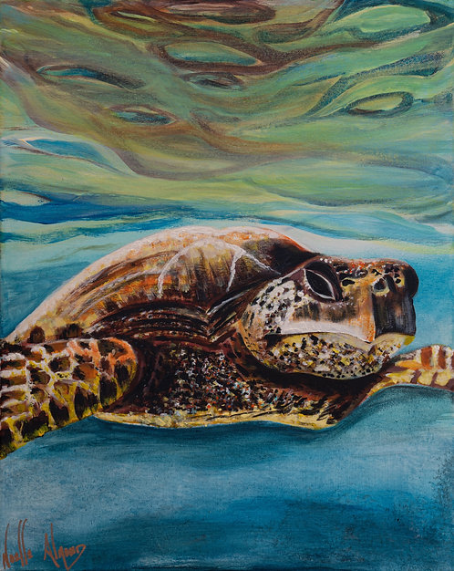 Seriousness of a Sea Turtle by Noelle Almond