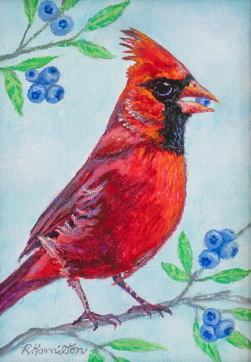 Cardinal by Dick Hamilton