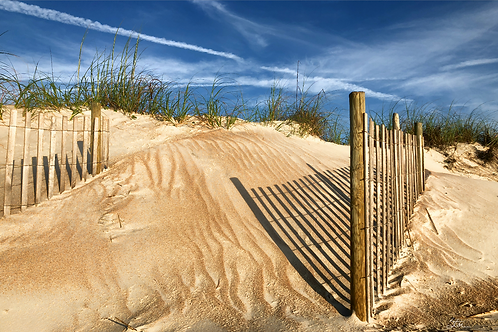 Dune Fence by Stan Cottle