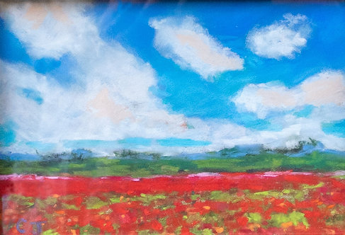Red Poppies by Cindy Jenkins
