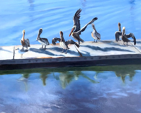 Wharf Pelicans by Rebecca McDannold