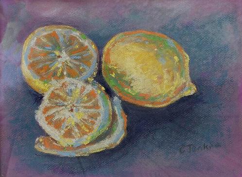 Lemon Study by Cindy Jenkins
