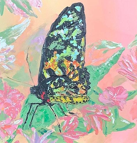Butterfly in the Garden by Jeanne Tennyson