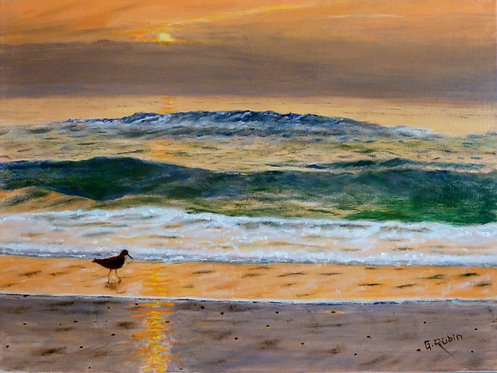 Dawn Beach Walker by Gary Rubin