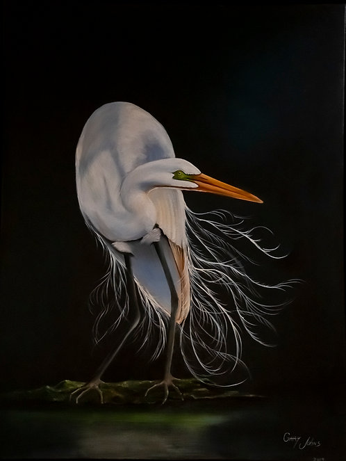 Egret at Rest by Gary Johns