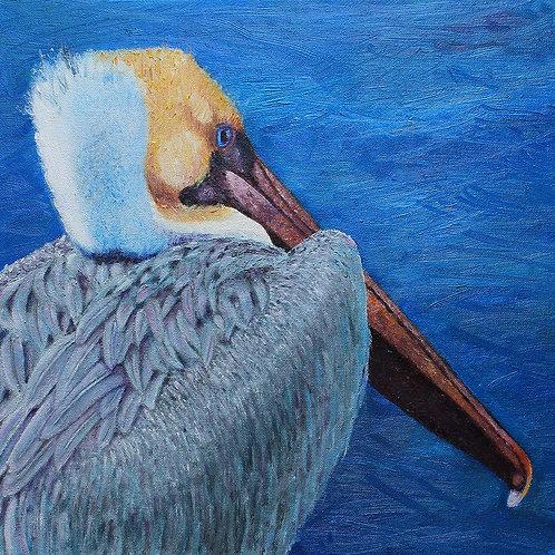 Pelican Blues by Susan Hitchcock