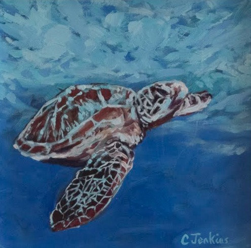 Marine Turtle at Sea  by Cindy Jenkins