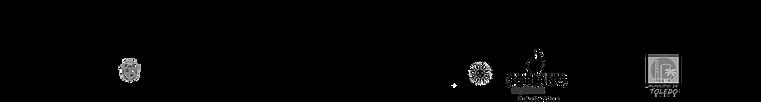 Franja logos UNUI 2021 negro.png
