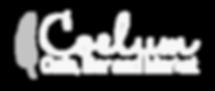 Final Coelum Logo white transparent back