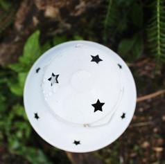 fte lantern.jpg