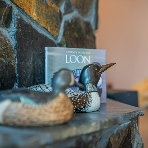TWO LOON LODGE-10.jpg