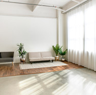 Two posing sofas. Light biege sofa folds down.