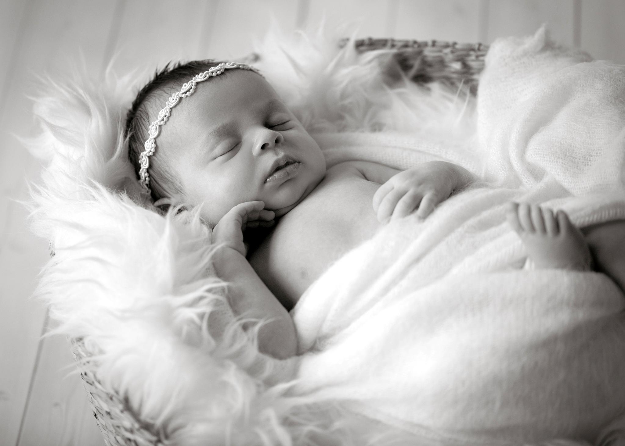 Portland Newborn Photography