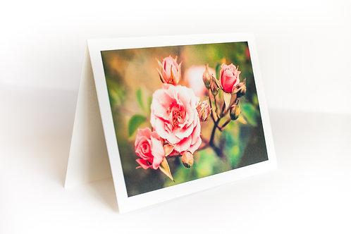 5x7 Photo Cards