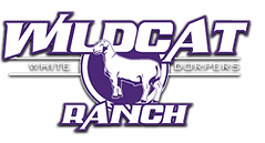 Wildcat Ranch Dorpers.png