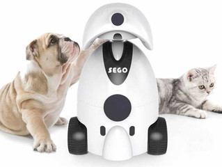 Робот-помощник и няня для домашних питомцев