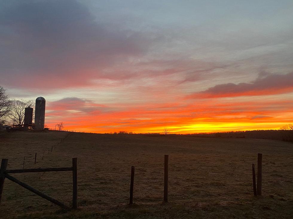 Sunset Picture .JPEG