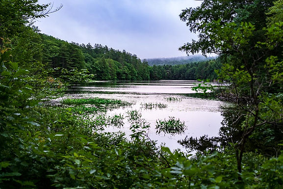 Guide to The Northeast Backcountry Discovery Route Section 4 NEBDR