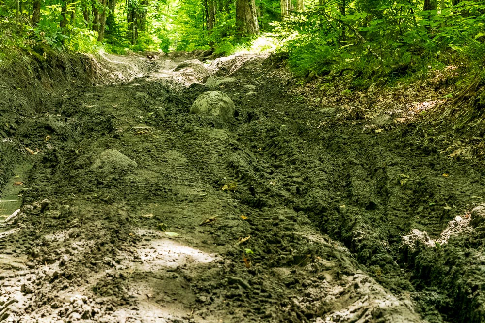 Mud pit on Comigan Rd during a dry year.