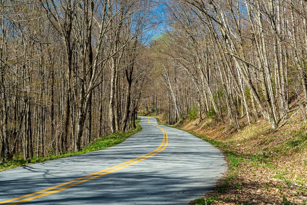 Lincoln Gap Road
