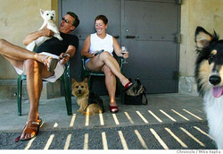 Touring Wineries with Dogs