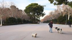 Walk at Retrio park