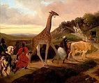 Giraffe_Crossing_(1827)_by_Jacques_Raymo