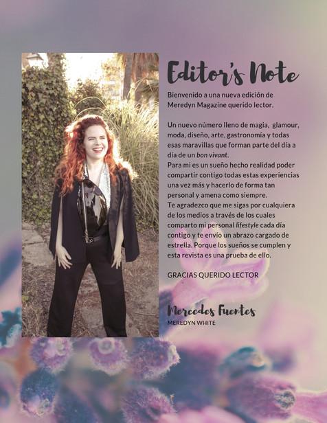 Revista Blogger.jpg