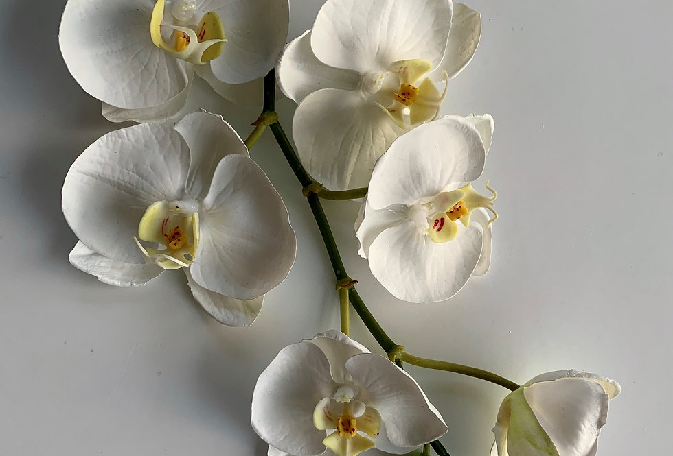 ORCHID -SMALL