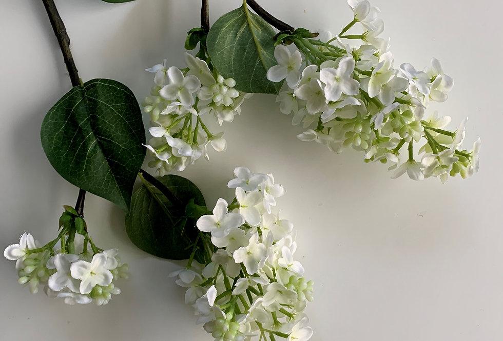 LILAC - WHITE SHORT