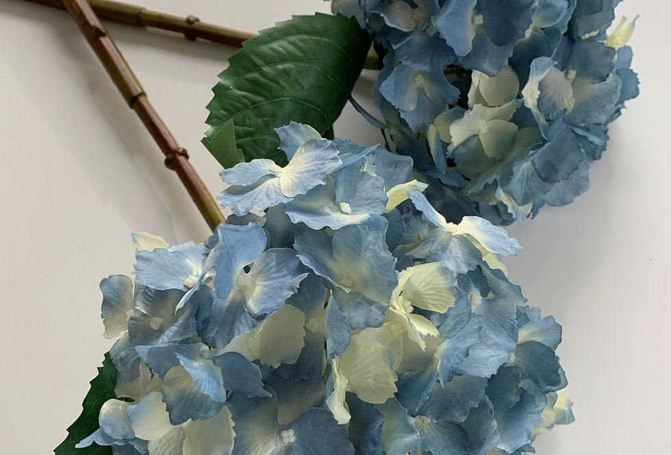 PALE BLUE HYDRANGEA