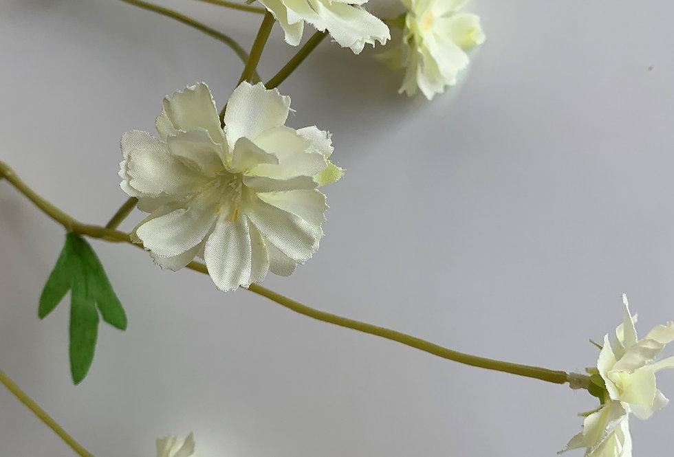 CREAM MEADOW FLOWER