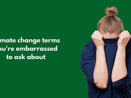 Climate change terms you're embarrassed to ask about