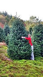 Tree Hug.jpg