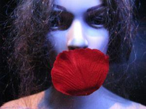 Debutto di Petali - nuova produzione Teatro delle Radici