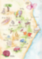 Grace_Map-4.jpg