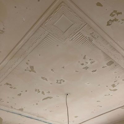 painter-manly-heritage-ceiling-before.jp